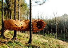 A giant wooden cocoon suspended between trees