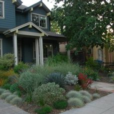 Green thumb on pinterest 71 pins for Verdance landscape design