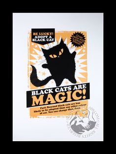 Black cats are magic! From the brilliant Mad Old Cat Lady.