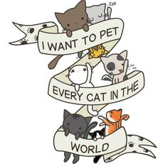 I Want to Pet Every Cat in the World