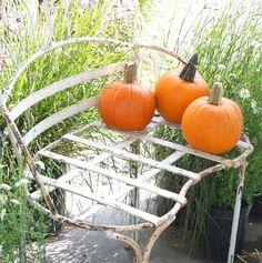 three little pumpkins sitting on a bench