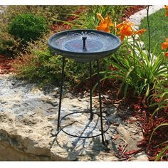 Smart Solar Somerset Verdigris Solar Bird Bath Fountain Item # HN-ST037  $94.98 List Price: $149.99 Save 37% Verdigris resin bowl, matte black wrought iron stand, No plumbing - water circulates via included pump, Eco-friendly, solar-powered for outdoor use, Holds over a gallon of water in 2-inch deep bowl, Reservoir cover included for use without the solar panel