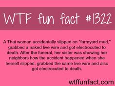 MORE OF WTF FACTS are coming HERE  nature, movies  and fun facts