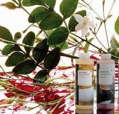 Remedios naturales para las cicatrices
