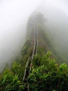 Ha'iku Stairs on the island of Oahu in Hawaii aka Stairway to Heaven