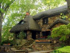 Dream cottage in the woods!