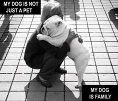Love this... Have this relationship with my dog...