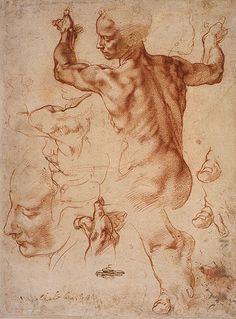 Study for the Libyan Sibyl, Michelangelo