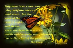 Photo of butterfly on yellow flowers with scripture Psalm 33:3 Sing unto him a new song; play skilfully with a loud noise. 4 For the word of the Lord is right; and all his works are done in truth. 5 He loveth righteousness and judgment: the earth is full of the goodness of the Lord. King James Version (KJV)