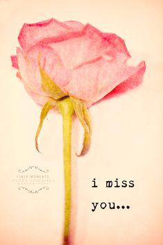 graphic ce7b8, vintage roses, mom rose