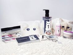 Could this be the answer to that hagged look one gets after a full day in the booth? Choupette's Diary: A Chic Guide To Pampering with Shu Uemura