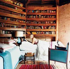 Tiny house living...with lots of bookshelves! Love it! This is what is missing in most of those plans :)