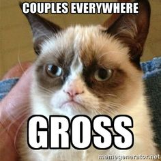 In honor of the upcoming Valentines day cat quotes, grumpy kitty, grumpi cat, funny pictures, funni, sauc, alphabet songs, grumpy cats, cat memes