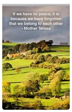 Twitter: If we have no peace, it is because we have forgotten that we belong to each other - Mother Teresa #quote #quotes