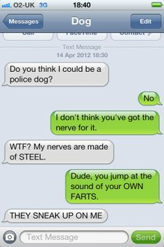Texts from Dog: My nerves are made of steel. texts, funni text, anim, laugh, dogs, stuff, dog text, giggl, humor