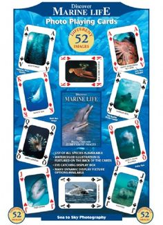 Discover Marine Life Playing Cards at theBIGzoo.com, a family-owned gift shop with 12,000+ animal-themed items.