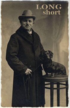 Circa 1900 dachshund