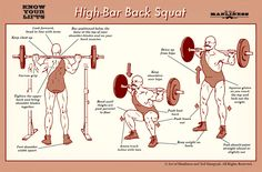 Know Your Lifts: High Back Bar Squat