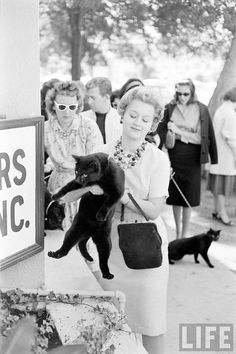Black Cat Auditions in Hollywood (1961) Ralph Crane