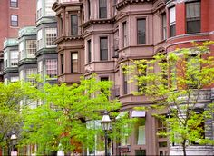 #newbury street #spring in boston