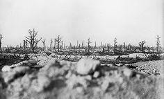 The battlefield of the Marne, between Souain and Perthes in 1915