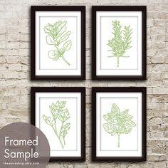 Herb Garden Series Set of 4 - 5x7 A