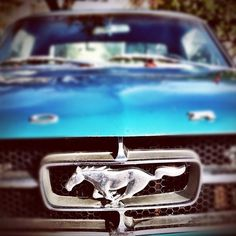 Blue 60's Ford Mustang, my dream car.