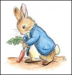 How to create a Peter Rabbit garden with kids. (Did you know that's a radish and not a carrot Peter is pulling?!) pamelaoprice