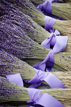*~Lavender