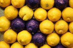 NAMI-NAMI: a food blog: A Brilliant Lemon Cheesecake (and a Lemon Mousse)