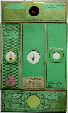 > a Selection of Antique Microscope Slides from the Victorian Era, c. 1830 - 90s, Paper Design from C. Poultan.    s Selection of Antique Microscope Slides from the Victorian Era c. 1830s ~ 1890s, C.