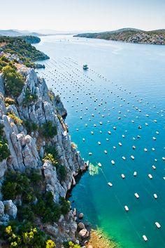 Krka river near Šibenik, Dalmatia, Croatia: Šibenik is a historic town in Croatia located in central Dalmatia where the river Krka flows into the Adriatic Sea.
