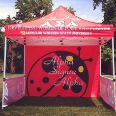 new ladybug tent ~ yes please!