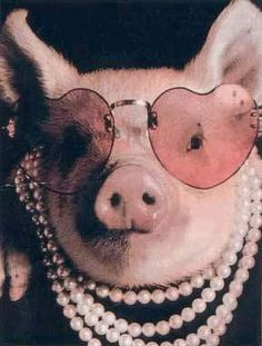 .pink pig in heart glasses & pearls♛♥.     For morgan