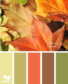 fallen hues: for everywhere