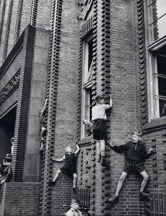 Friedrich Seidenstücker - Aufstieg der Begabten, 1950