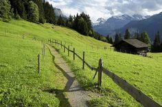 Wengen, Zwitserland