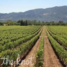 Honeymoons Travel: Napa and Sonoma Valley Honeymoons from The Knot