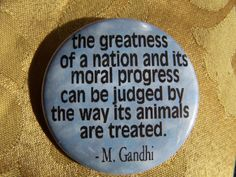 M. Gandhi quote on animal rights  AMEN!   ...........click here to find out more     http://googydog.com