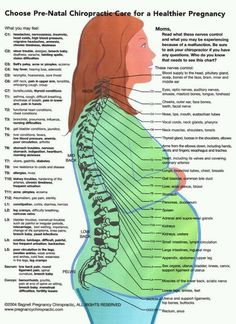 Important chart: how chiropractic care can help pregnancy.