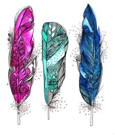 feather sketches