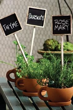 Herb Labels and Tea Cup Pots