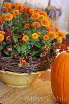 Mum makeover .... take an ordinary mum and hide the container... such as in a grapevine wreath in a bowl; then add this and that for interest such as berries, acorns, twig or sticks, autumn leaves....then enhance the vignette with fall treasures!