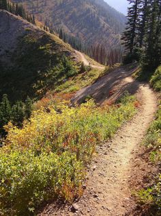 Chinook Pass, Pacific Crest Trail. Hiking the Pacific Northwest.