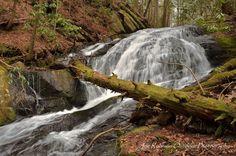 Waterfall in Blue Ridge, Georgia