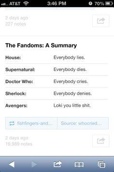 Accurate Fandom descriptions