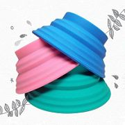 Bliss Paws Collapsible Travel Bowl. Fun colors!