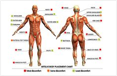 Tattoo placement chart - levels of discomfort