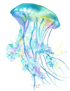 Original watercolor jellyfish study no. 4 painting by Jessica Durrant, titled- Electric Feel