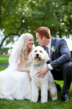 Dog in Bow Tie for Wedding Ceremony | photography by http://www.kimthielphotography.com/